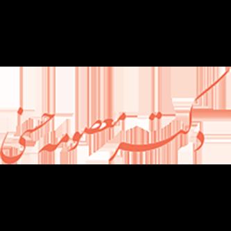 وبسایت شخصی دکتر معصومه حسنی